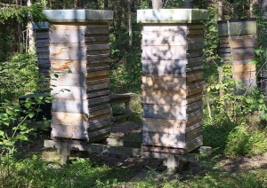 Str Good Apiary